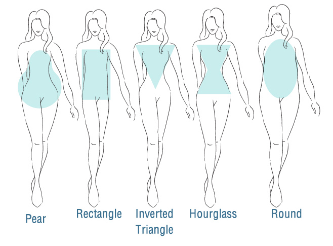 body shape diagram
